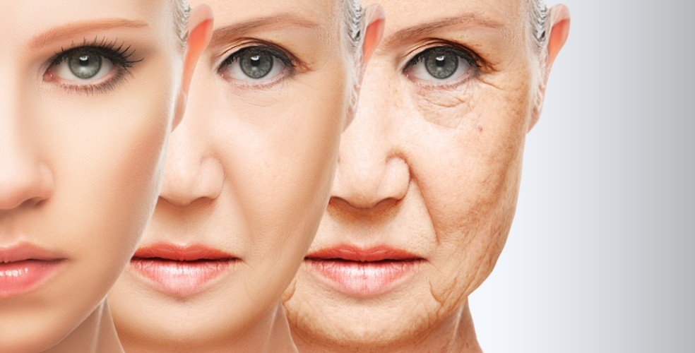 The Science of Anti-Aging