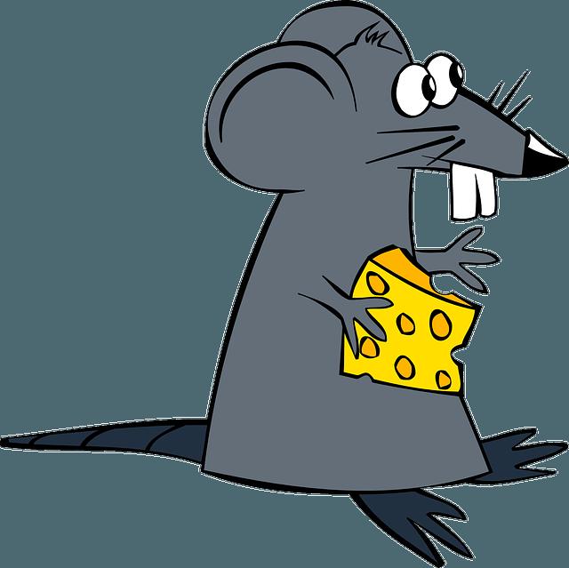 Naughty restaurant rats